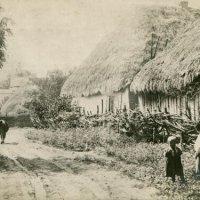 Как выглядело украинское село в XIX веке: коллекционер поделился уникальными кадрами