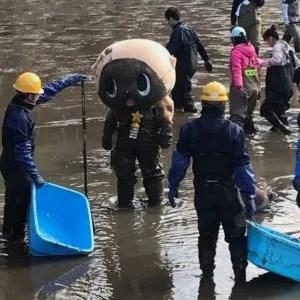 ゆるキャラ【ちぃたん】とは誰?着ぐるみが池の水全部抜く大作戦参加して平気?