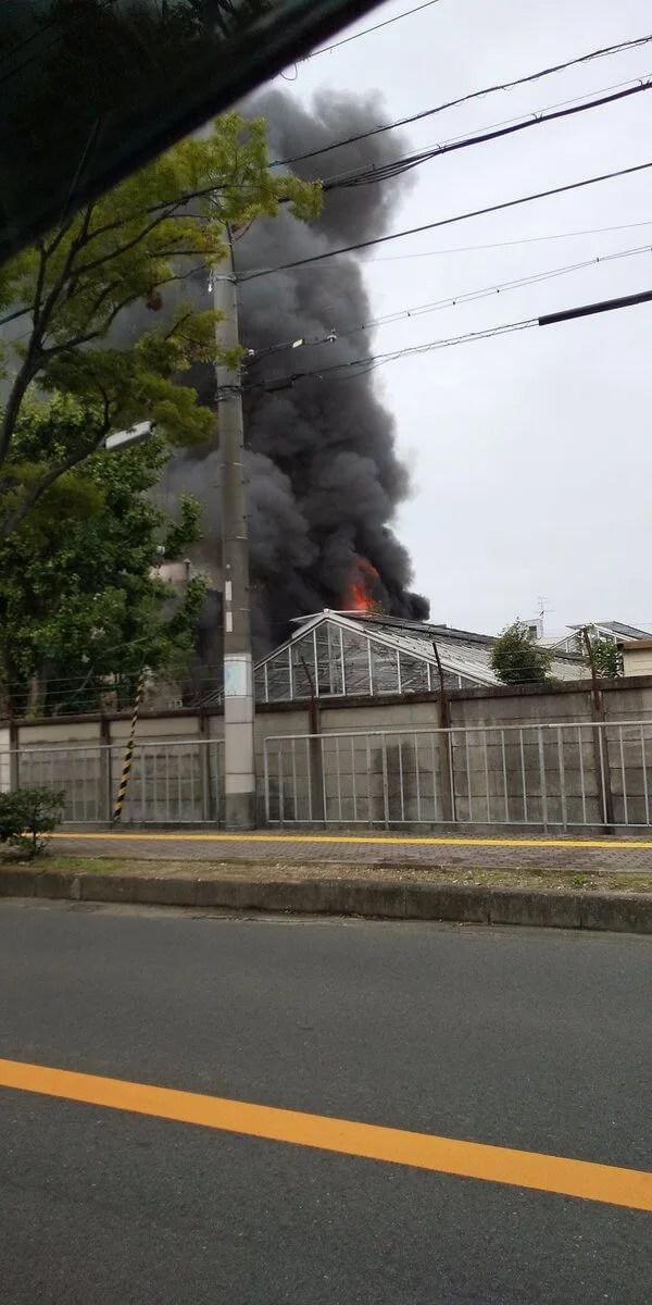 大阪府貝塚市役所付近 中華料理 光樂で火事