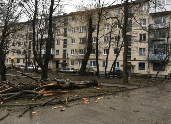 В связи с ураганным ветром в Ставрополе введен режим ЧС