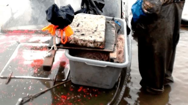В Новоселицком районе выявили факт незаконной добычи водных биологических ресурсов