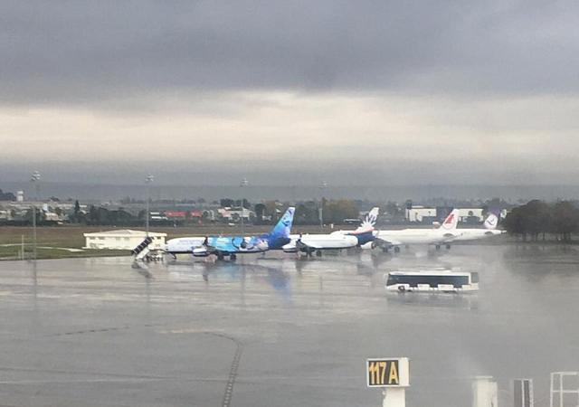 Сильный туман стал причиной отмены 12 авиарейсов в Краснодаре