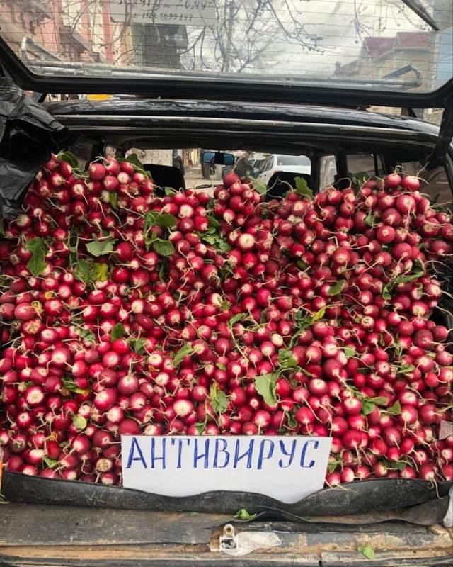 «Антивирусный» редис продает предприимчивый мужчина в Дагестане