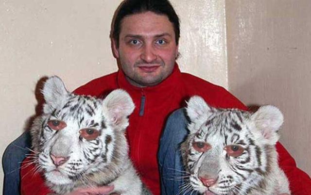 Полиция отказалась возбуждать уголовное дело на Эдгарда Запашного