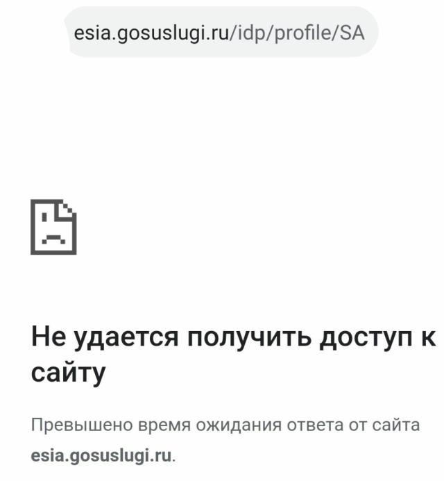 Сайт госуслуг перестал открываться после обращения Путина к Россиянам