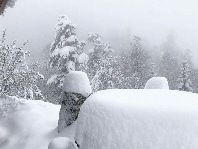 Снегопад обрушился на Сочи