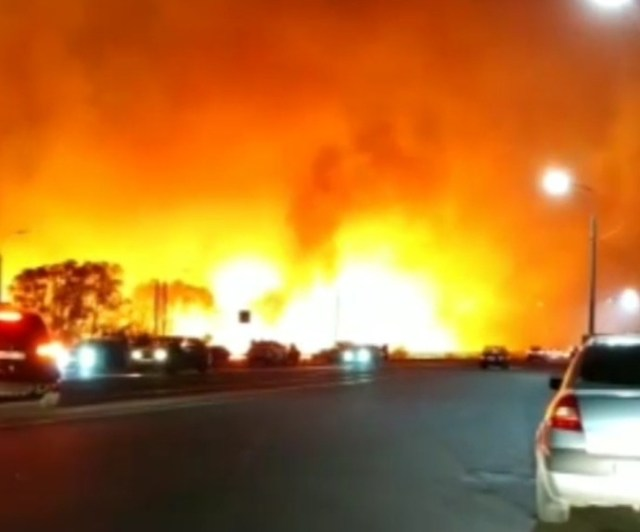 В пригороде Воронежа горят леса