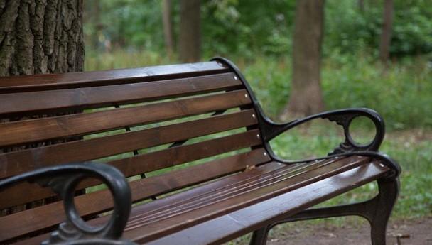 Ставропольчанин украл из парка декоративную скамью