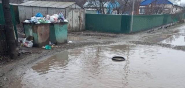 В одном из сел Ставрополья не вывозили мусорные отходы из-за огромной лужи