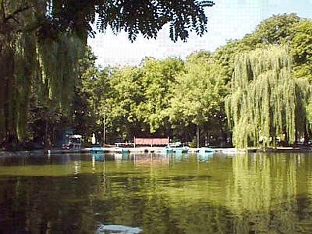 Modernizarea lacului costă 5 miliarde