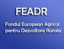 1.110 proiecte europene pe FEADR