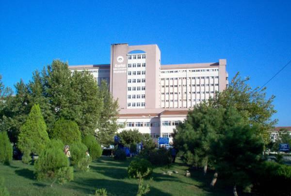 «Свиной грипп» унес жизни трех человек в Стамбуле