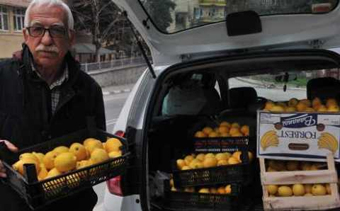 Мэр отправил в Артвин 150 кг лимонов