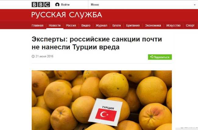 Эксперты: российские санкции почти не нанесли Турции вреда