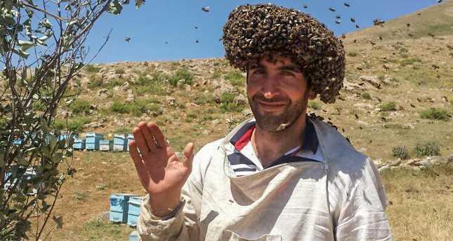 Турецкий пасечник хочет побить мировой рекорд