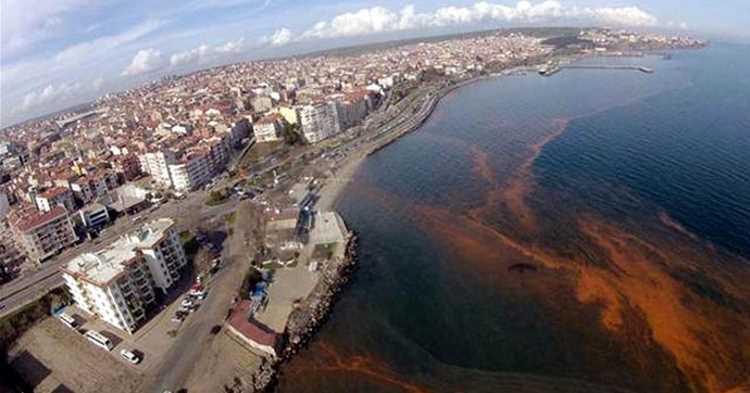 Оранжевое море вместо Мраморного появилось в Текирдаге