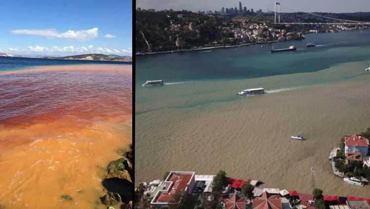 Коричневый Босфор и красное море в Измире