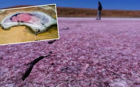 Высохшее озеро поразило миллионы своей красотой