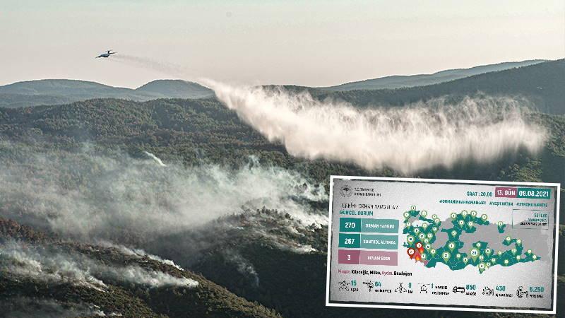 Пожары в Турции: Спустя 2 недели борьба продолжается