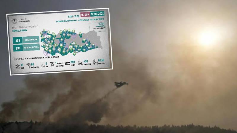Турция справилась с лесными пожарами
