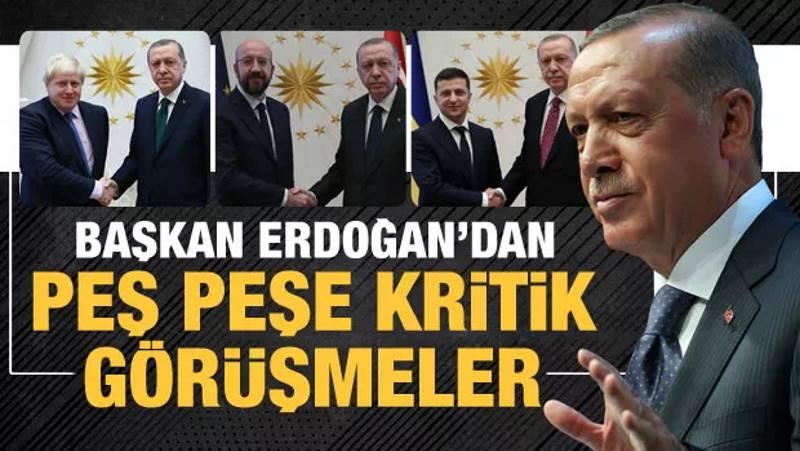 Эрдоган провел беседы с главами ЕС, ФРГ, Украины и Великобритании