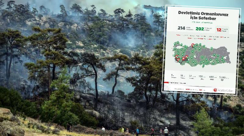 Краткая сводка: Анталья впервые за 11 дней не горит