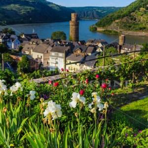 Pfarrgarten Oberwesel-9524 - News vom Rhein