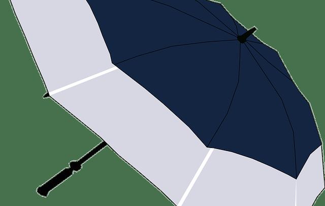 コンパクトなはずの折りたたみ傘で大きいもの4種類
