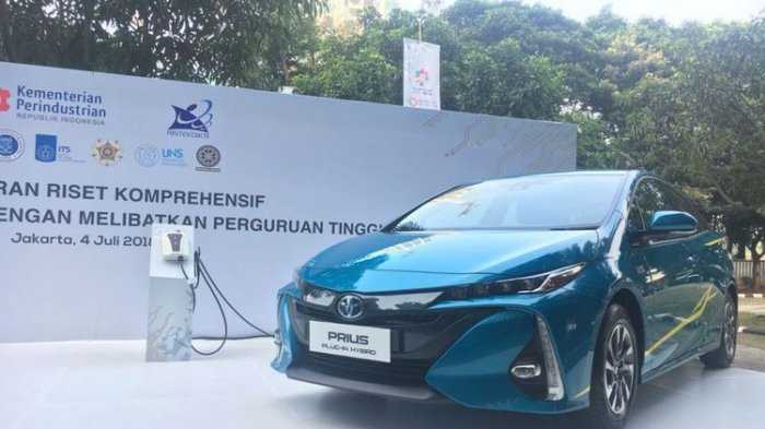 Electric tourist car rental is launched