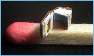 the world's smallest book