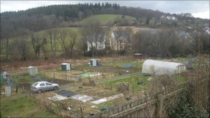 Lampeter Allotment site