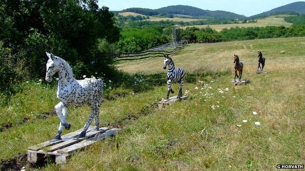 Model horses used in an experiment to find out the effect of zebra stripes on horseflies (c) Gabor Horvath