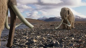 Woolly mammoth image