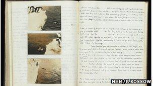 Levick notebook (Image: NHM/R Kossow)