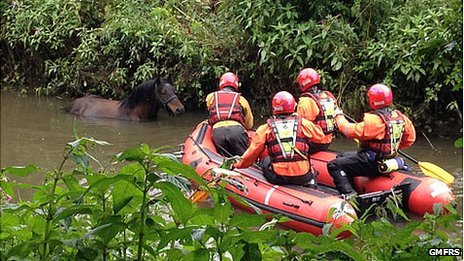 """Greater Manchester Fire and Rescue Service said the rescue was """"difficult"""" .  BBC News"""