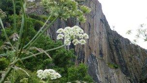 View of Dumbarton Rock