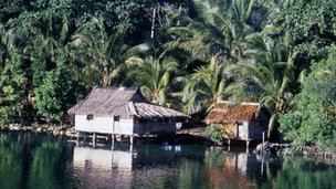 House in Solomon Islands (file image)