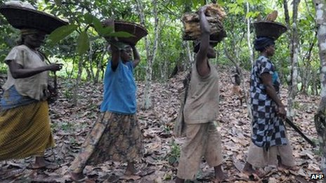 Women farmers carry wood as they leave a cocoa plantation in Ivory Coast on 18 October 2008