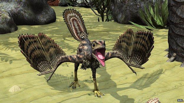 Archaeopteryx artwork