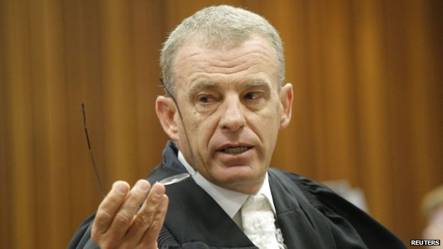 State prosecutor Gerrie Nel (12 May 2014)
