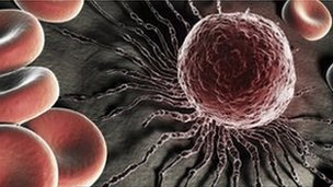 A human stem cell up close
