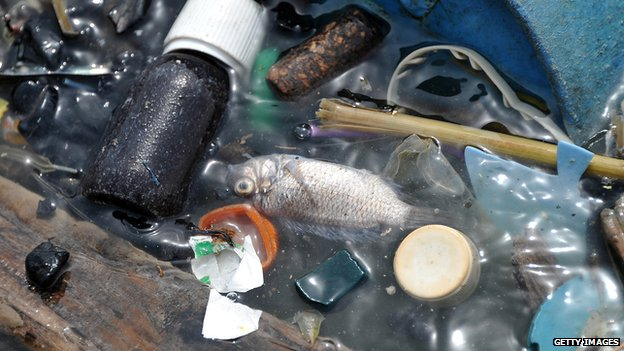 Waste and pollution in water