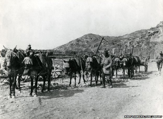 Troops of the Zion Mule Corps in Palestine, WW1