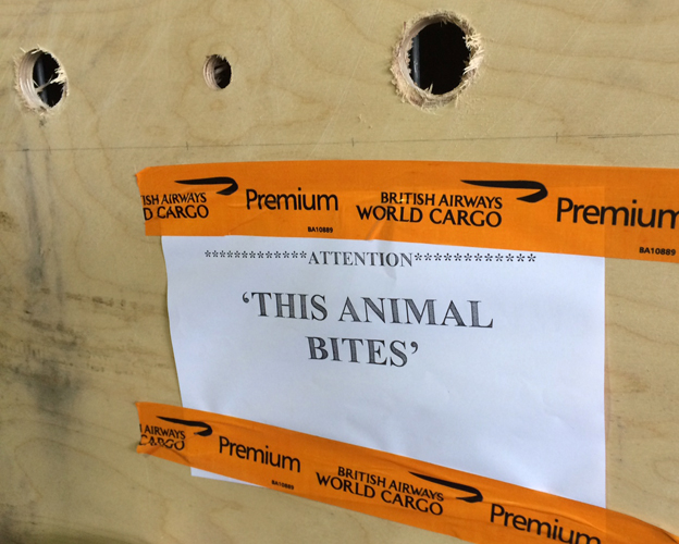 'This animal bites' cargo label