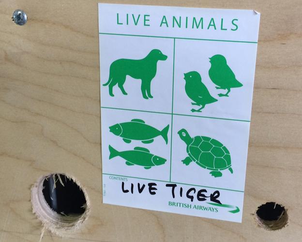 Live tiger label