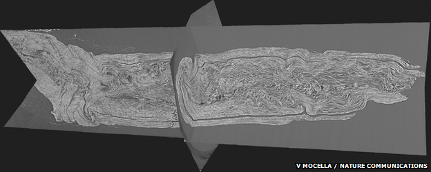 cross-sections of the scroll