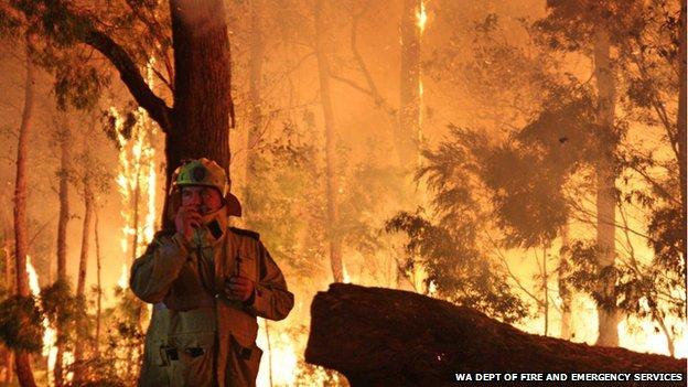 Bushfire at Northcliffe, Western Australia. Feb 2015