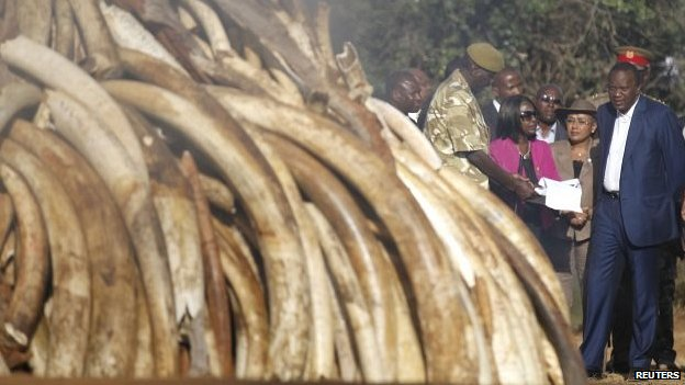 Kenya's President Uhuru Kenyatta (R) looks on as a pile of ivory is set alight