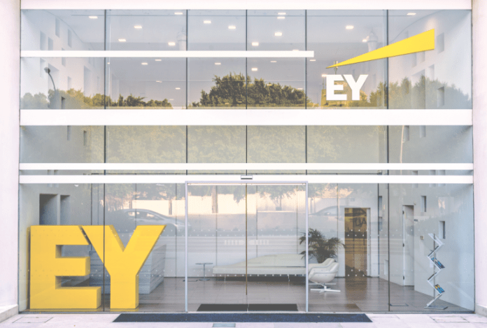 EY Executive Says Bitcoin Has No Practical Use in India