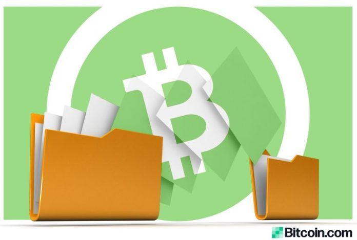 New Bitcoin Cash-Powered File Storage Concept Sparks Interest and Debate